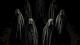 僕が数年ぶりにハマった驚異のメタルダンスユニット「BABYMETAL」